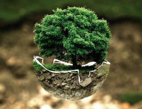 Otvoren poziv studentima/kinjama za učešće u izradi regionalne ekološke povelje mladih